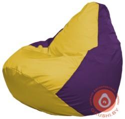 Г2.1-247 жёлтый и фиолет