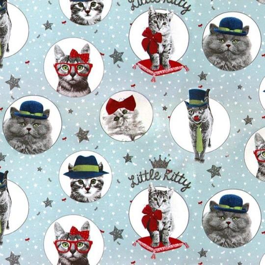5418_Little Kitty A 03_normal